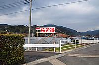 Dsc_8129
